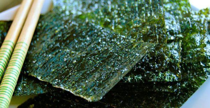 donde conseguir alga nori online