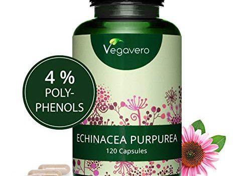 Extracto de Equinácea Vegavero 4% Polifenoles Sin Aditivos Resfriados, Gripes, Infecciones, Defensas