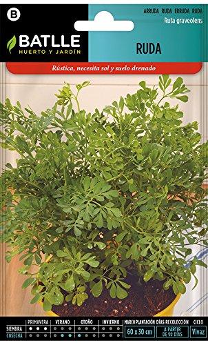 Semillas Aromáticas - Ruda - Batlle
