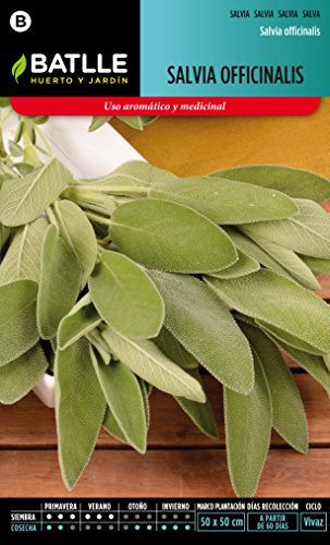 Semillas Batlle 096503BOLS - Salvia